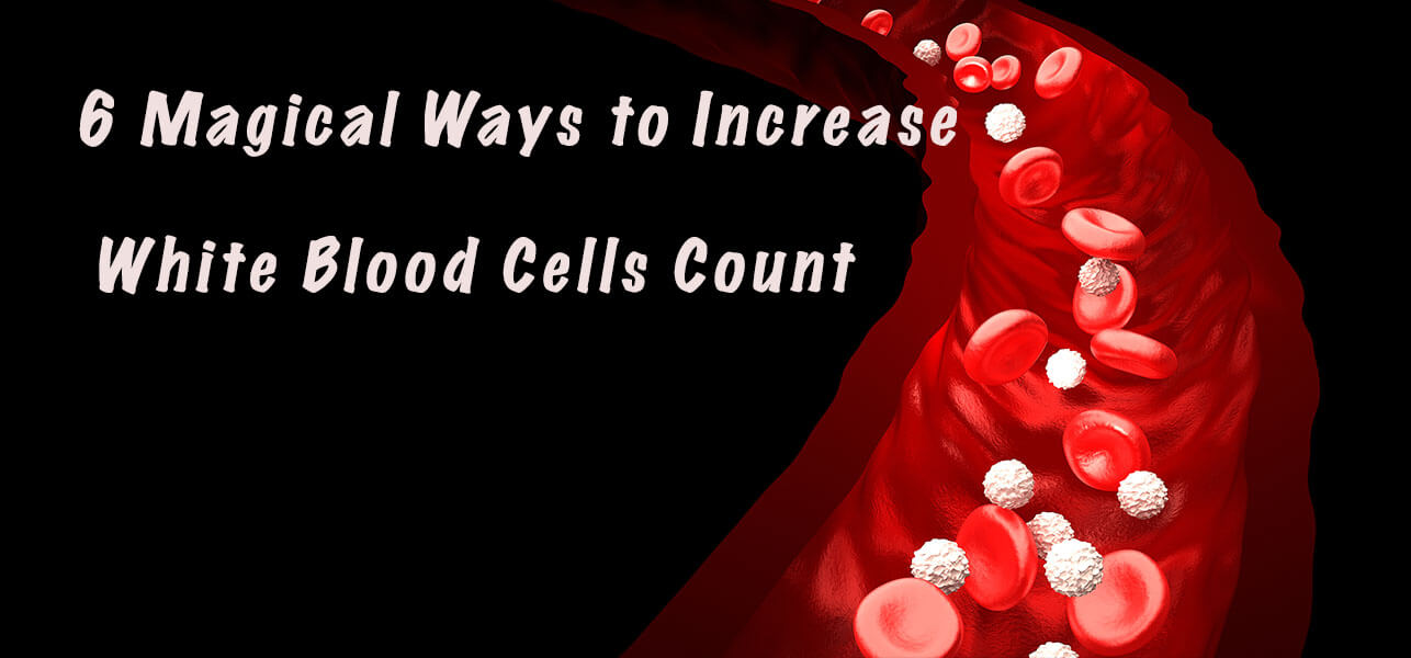 6 Magical Ways to Increase White Blood Cells Count