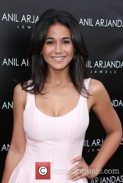 Emmanuelle Chriqui Biography